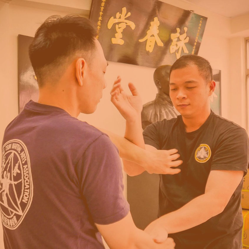 Master the Art of Wing Chun Kung Fu