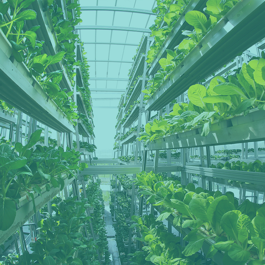 The Sky – The Future of Farming