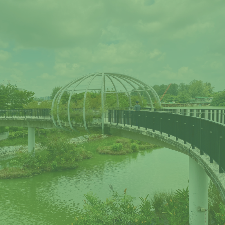 Idyllic Waterways, Wetlands and Bridges of Punggol (Cycling Tour)